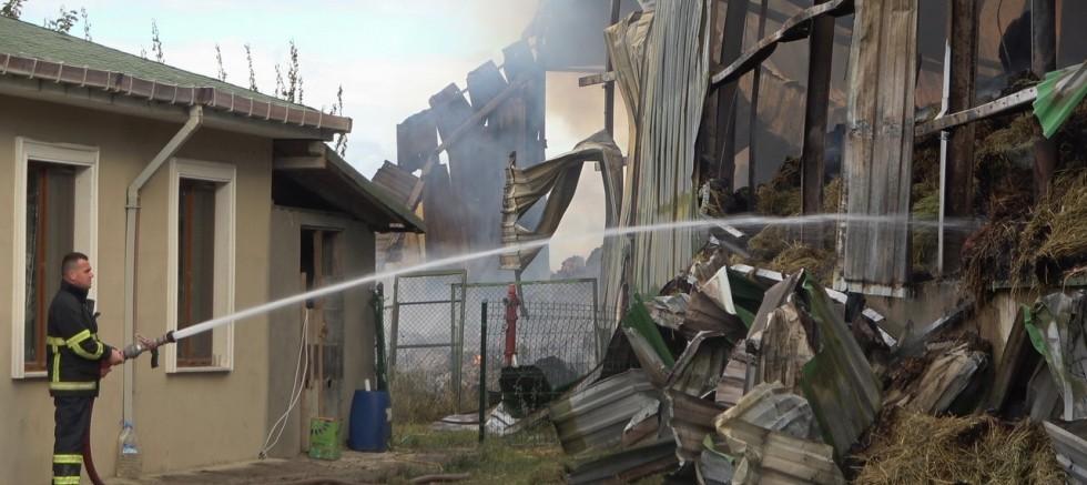 çiftlikte çıkan yangına müdahale devam ediyor